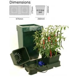 Autopot Easy2grow 2 Pot (8,5L) + Depósito