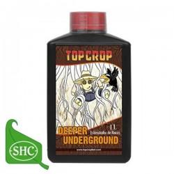 Deeper Underground · Top Crop