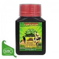 Green Explosion (Top Crop)