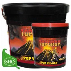 Top Vulcan · Top Crop