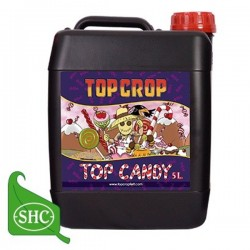 Top Candy Garrafa · Top Crop