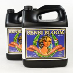 Sensi Bloom A&B Garrafa | Advanced Nutrients