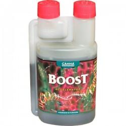 Boost Accelerator · Canna
