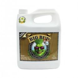 Big Bud Coco Garrafa | Advanced Nutrients