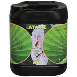 ATA-XL Garrafa · Atami