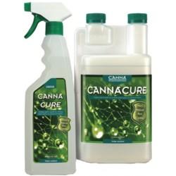 CannaCure · Canna