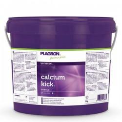 Calcium Kick · Plagron