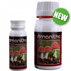 Amanitha · Agrobacterias