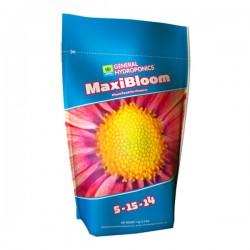 MaxiBloom · GHE