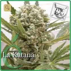 La Katana · Elite Seeds