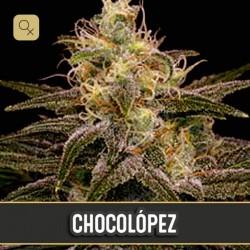 Chocolopez · Blimburn