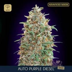 Auto Purple Diesel