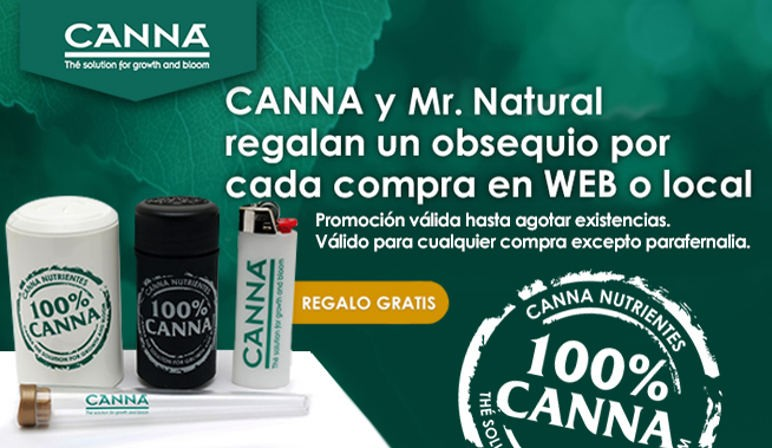 Canna y Mr Natural
