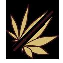 Híbridos de Cannabis