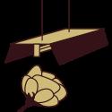Kit Floración